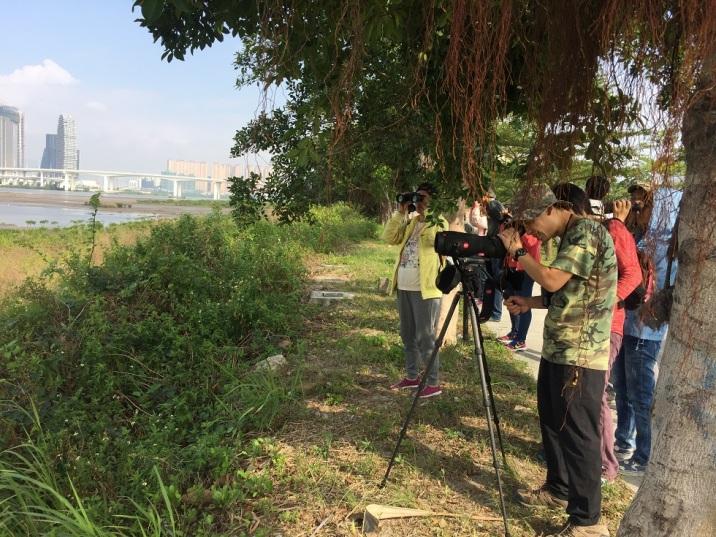 125 遷鳥千尋濕地觀鳥活動