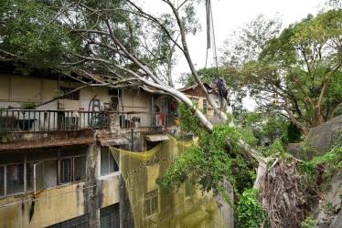 148 展示民署樹隊人員清理塌樹的工作情況,以及遇到的困難