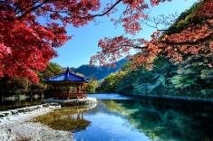 呂瑞源 - 韓國內藏山楓葉