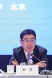 聯委會召集人、文化和旅遊部黨組成員杜江發言