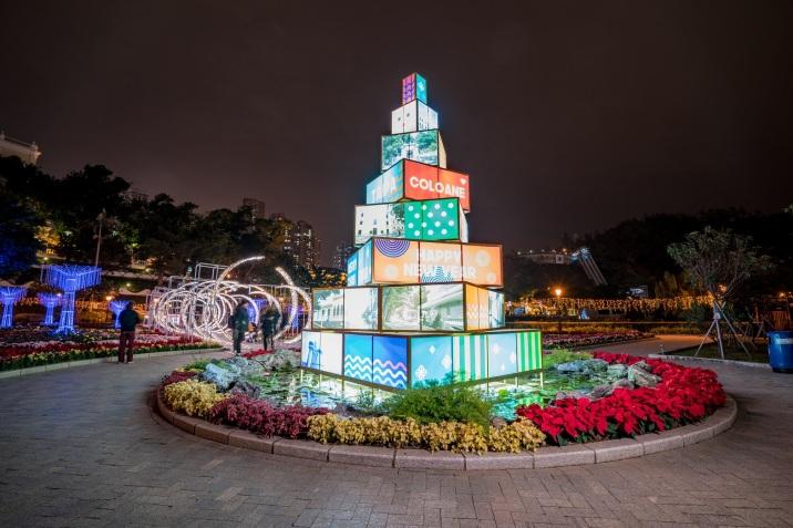 581 花展現場設置五米高的光影聖誕樹增添節日氣氛