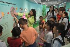 大人及小朋友學習大熊貓保育的知識