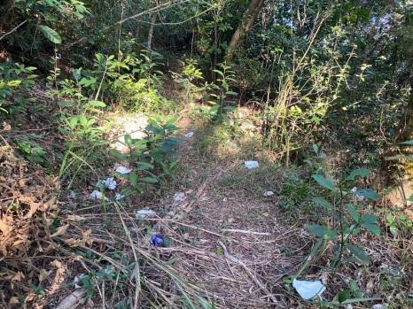 亂拋垃圾影響環境衛生