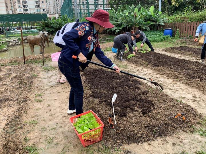 216 農耕體驗親近大自然