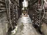 祐漢舊區相關樓宇內部通道已沒有垃圾堆積 (1)