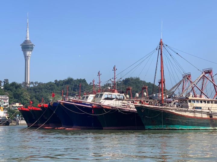 漁船有序錨泊